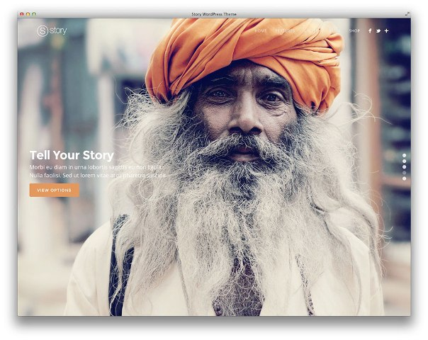 story-wordpress-theme-2